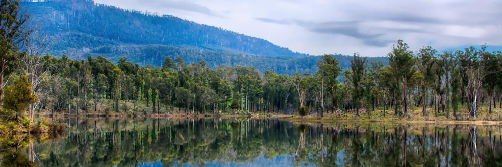 Tasmanien – Eine Insel für sich